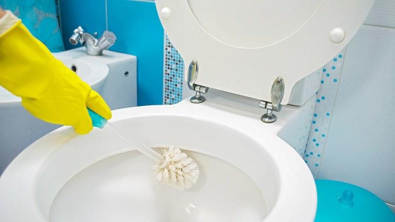 czyszczenie toalety /© Photogenica
