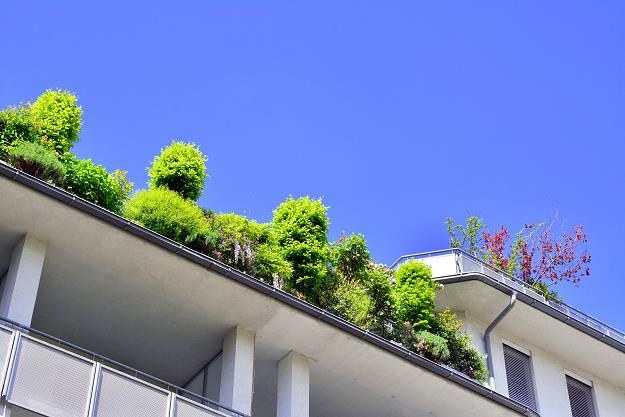 Dach płaski nie cieszy się zbyt dużą popularnością w naszym kraju /©123RF/PICSEL