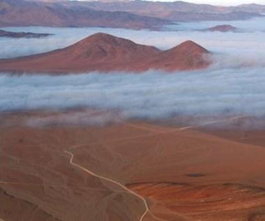 """""""Dakar"""" w Ameryce Południowej. Filmy"""