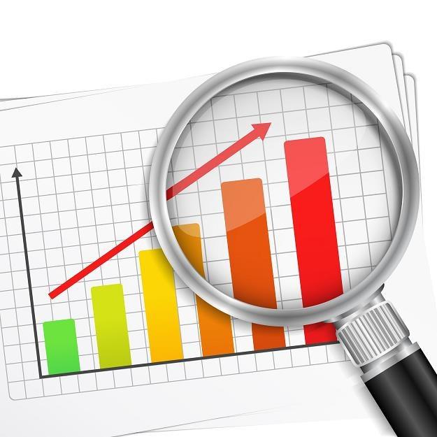 Dane Eurostatu potwierdzają dobrą kondycję polskiej gospodarki /©123RF/PICSEL