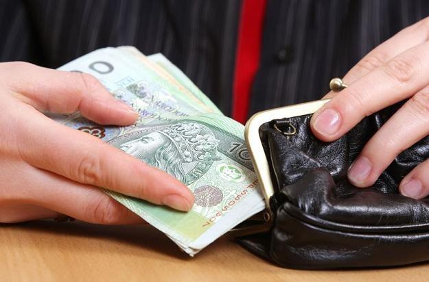 Dane GUS z rynku pracy są ważne dla złotego /© Panthermedia