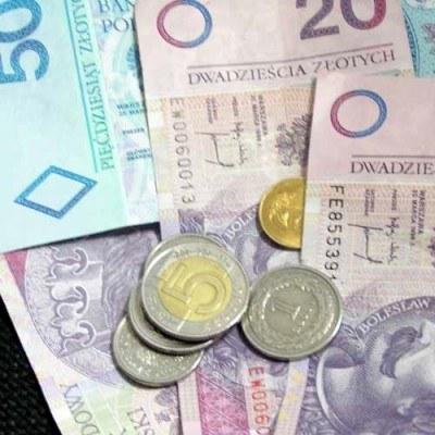 Dane makroekonomiczne mogą w piątek sprzyjać złotemu /INTERIA.PL
