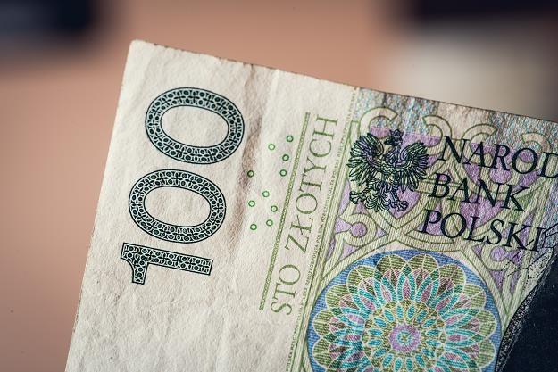 Dane tysięcy Polaków zagrożone! Można je wykorzystać do wyłudzenia kredytu /©123RF/PICSEL