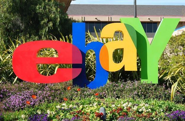 Daniny eBaya powinno być 51 mln funtów ze 181 mln funtów zarobku /©123RF/PICSEL