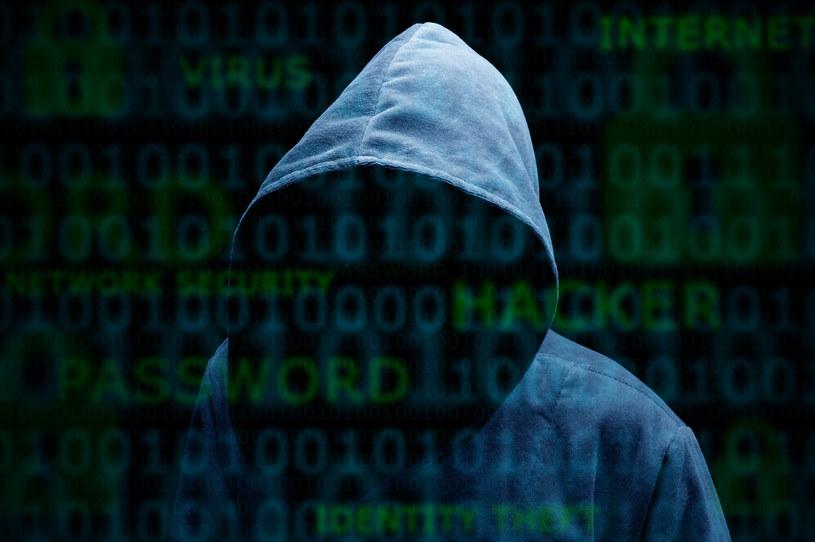 Darmowy dostęp do Netfliksa to oszustwo /123RF/PICSEL