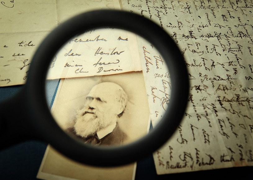 Darwinizm społeczny rozwijany był przez licznych badaczy XIX /123RF/PICSEL