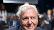 David Attenborough na COP24. Kilka zdań, które poruszyło Wielką Brytanię