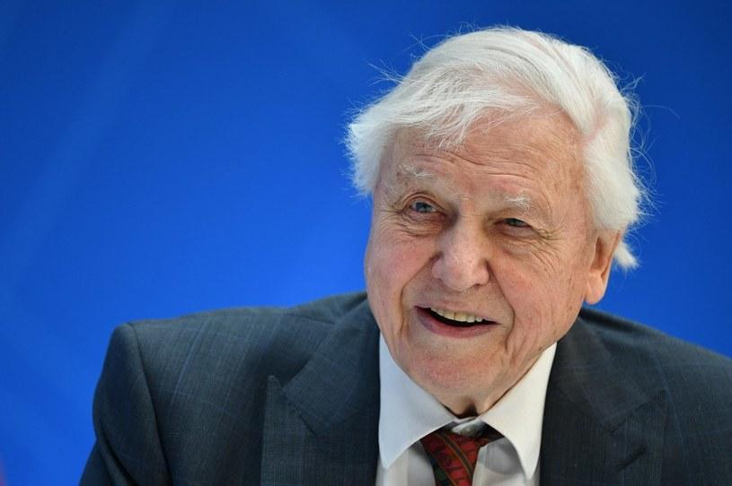 David Attenborough nie daje nadziei dla naszej Ziemi, jeśli nie zaczniemy współpracować razem /AFP