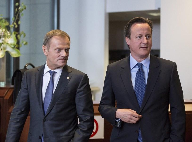 David Cameron i Donald Tusk /Thierry Monasse /East News