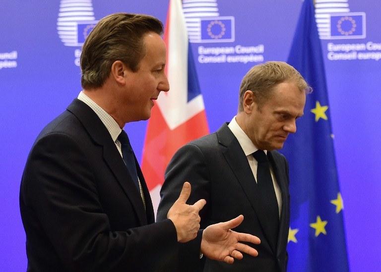 David Cameron i Donald Tusk /EMMANUEL DUNAND / AFP  /AFP
