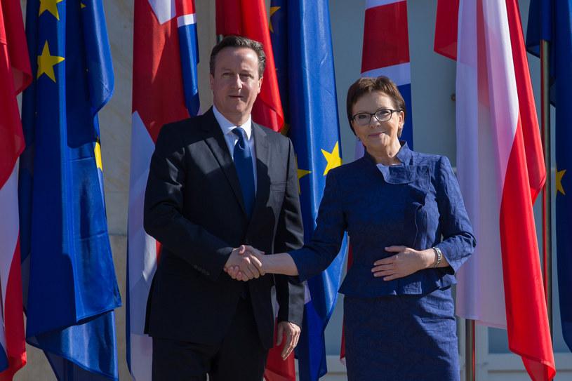 David Cameron i Ewa Kopacz /Agencja FORUM