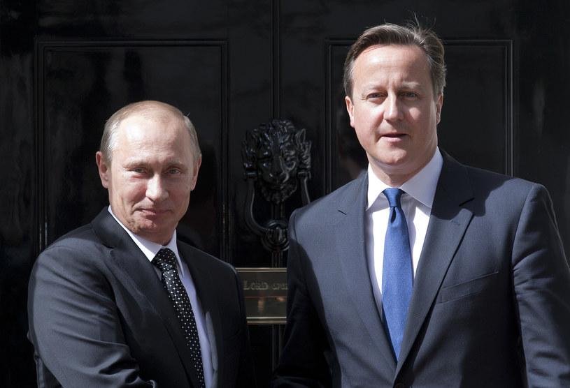 David Cameron i Władimir Putin /JUSTIN TALLIS /AFP