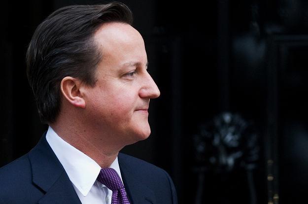 David Cameron, premier rządu Wielkiej Brytanii /AFP