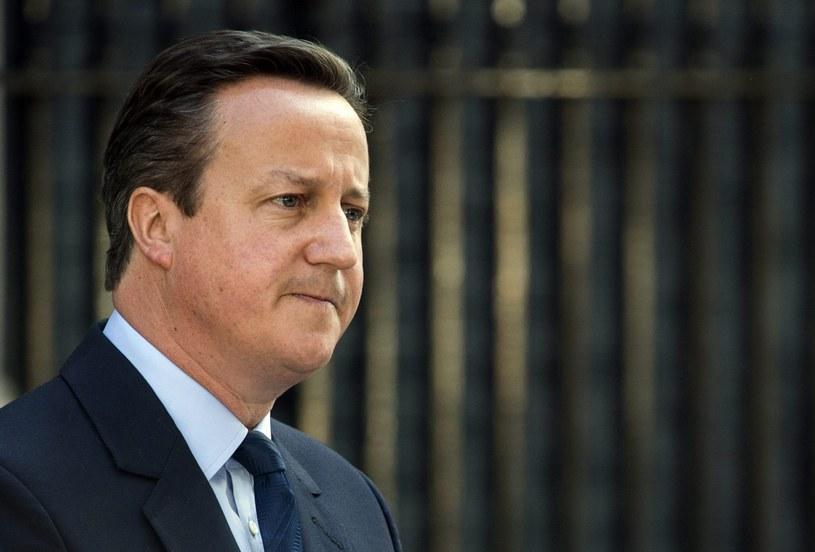 David Cameron /WILL OLIVER  /PAP/EPA