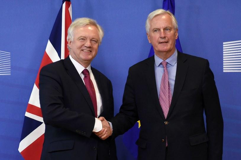 David Davis i Michel Barnier /AFP