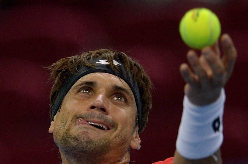 David Ferrer /AFP