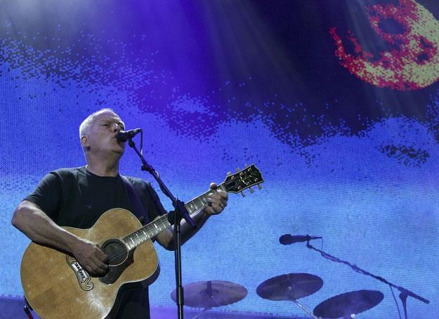 David Gilmour na scenie - fot. MJ Kim /Getty Images