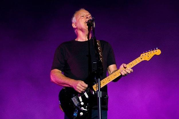 David Gilmour planuje nowy solowy album i solową trasę (fot. Łukasz Ostalski) /Reporter