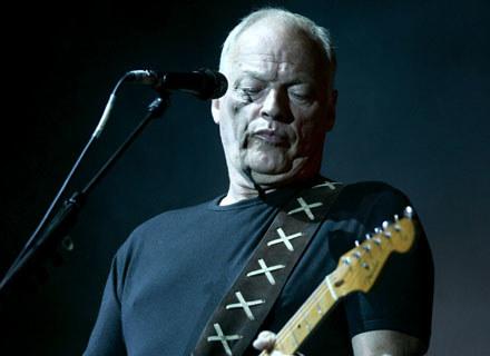 David Gilmour w akcji /arch. AFP