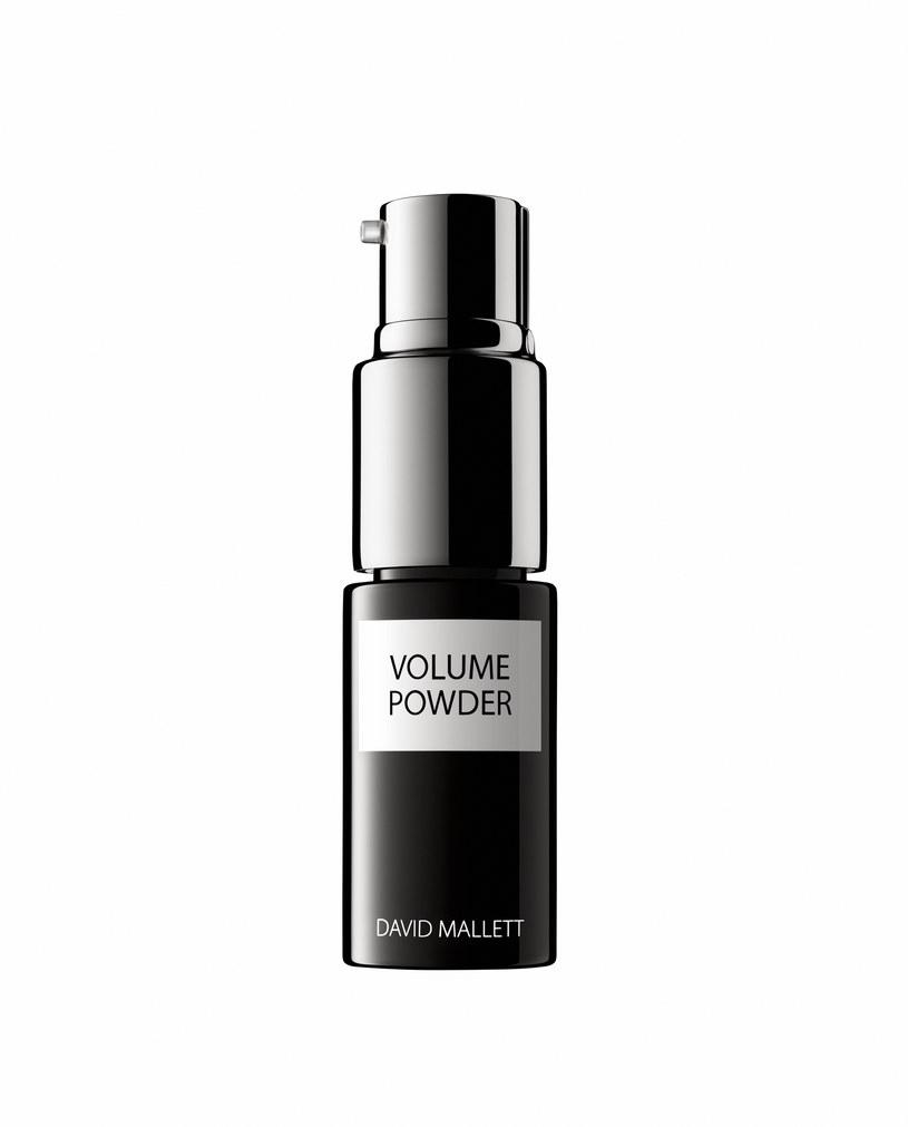 David Mallet Volume Powder /materiały prasowe