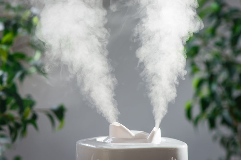 Dbaj o odpowiednią wilgotność powietrza w domu /123RF/PICSEL