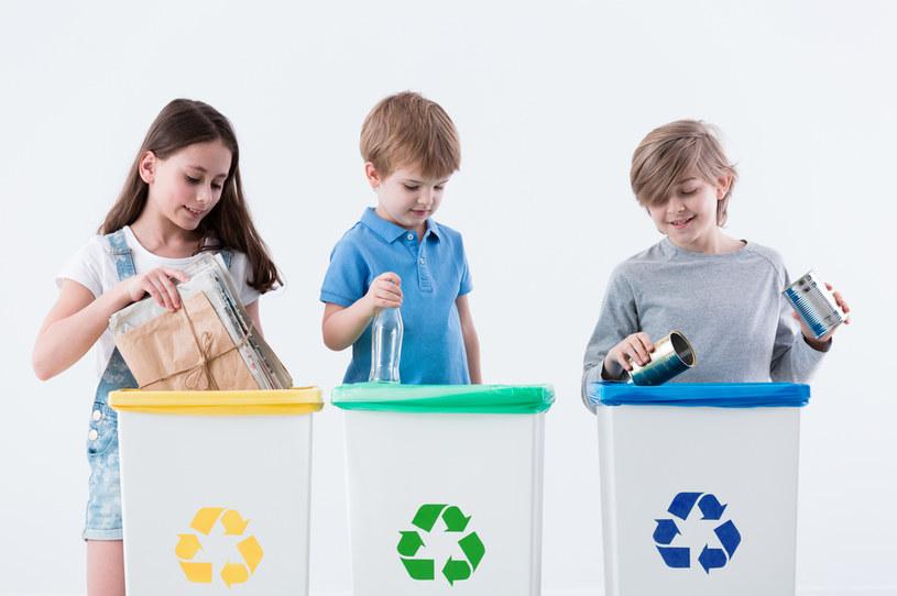 Dbanie o środowisko naturalne na trwałe wpisane jest w  działalność Procter & Gamble /123RF/PICSEL