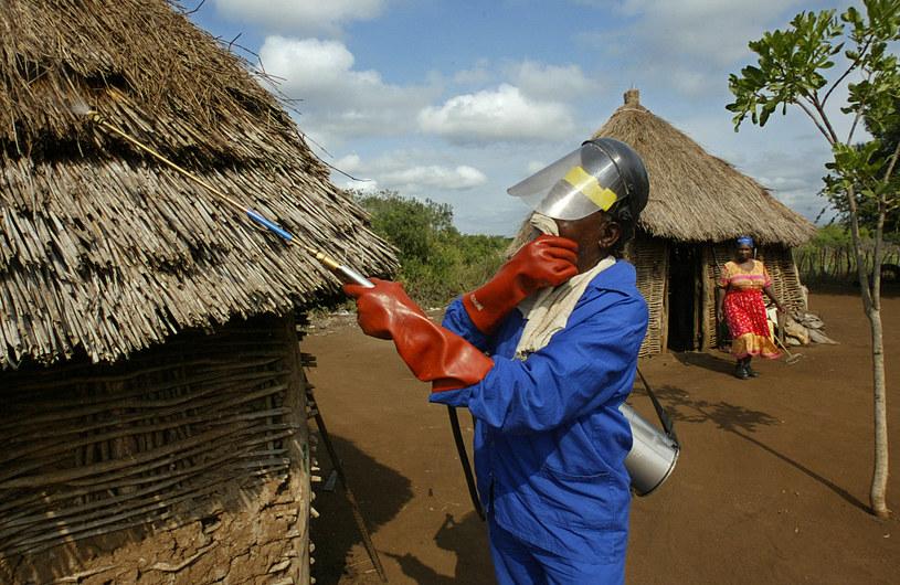 DDT nadal jest stosowane do zwalczania malarii /AFP