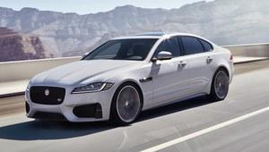 Debiut nowego Jaguara XF podczas wyczynu kaskaderskiego