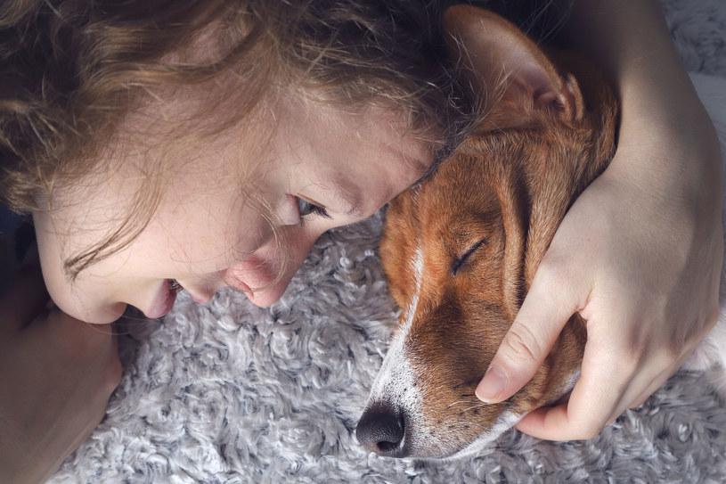 Decyzja o eutanazji swojego przyjaciela wielu z nas przerasta /123RF/PICSEL