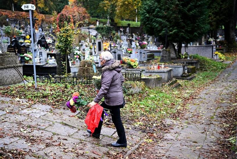 Decyzją rządu cmentarze zostały zamknięte /Darek Delmanowicz /PAP