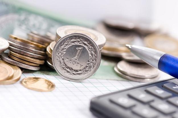 Decyzje i komentarze Fed, EBC i NBP będą decydujące dla notowań złotego /© Panthermedia