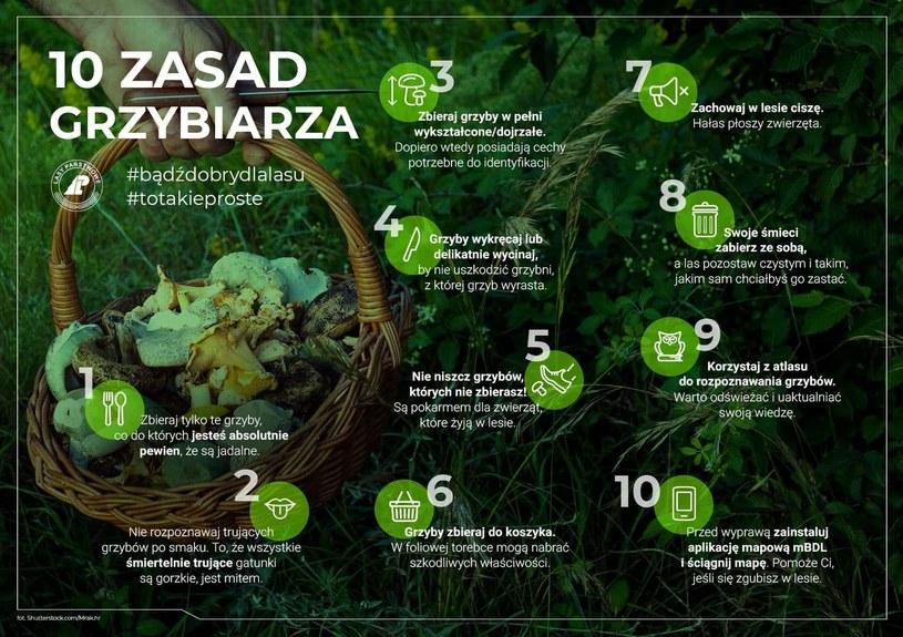 Dekalog grzybiarza przygotowany przez Lasy Państwowe /Twitter