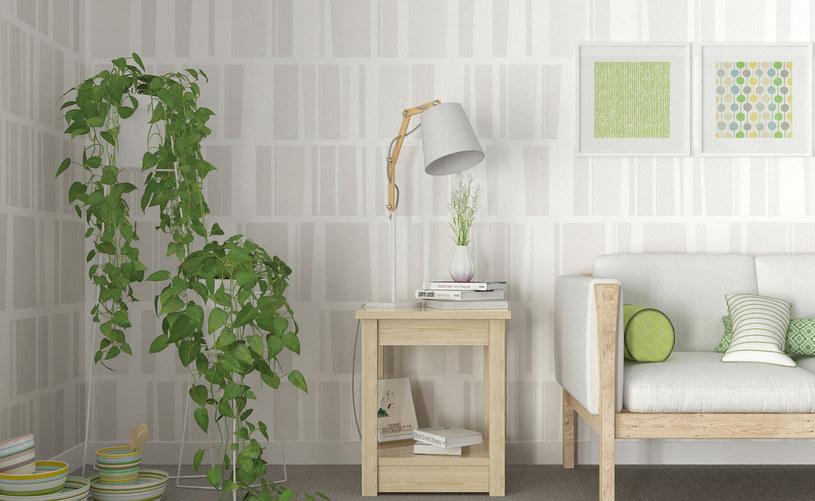 Dekoracja ściany to także zabawa kolorem /123RF/PICSEL