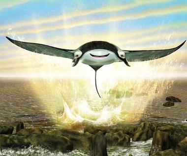 """""""Delfin Plum"""""""