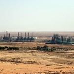 Delta niegroźna, Libia otwiera największe pole