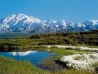 Denali, Park Narodowy na Alasce /Encyklopedia Internautica