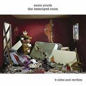 Sonic Youth: -Destroyed Room