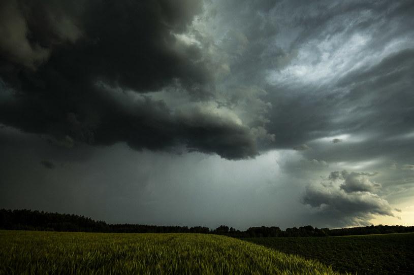 Deszczowa aura, zdj. ilustracyjne /Agencja Wschód /Agencja FORUM