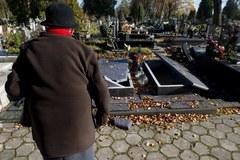 Dewastacja cmentarza w Łodzi