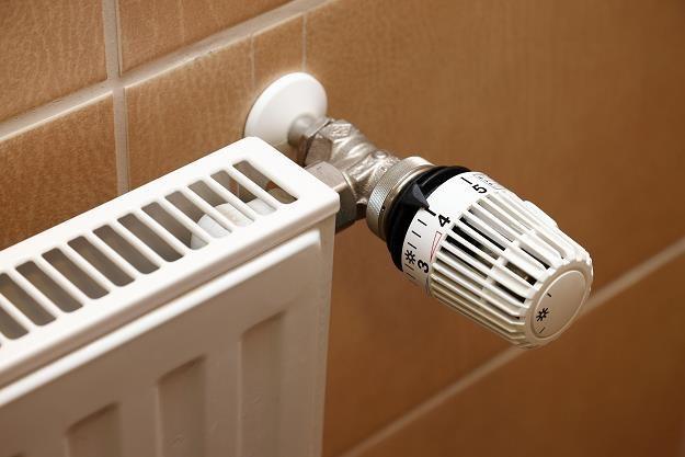 Deweloperzy i właściciele domów mogą wybrać pompy cieplne lub kotły na biomasę /©123RF/PICSEL
