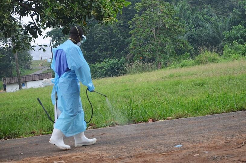 Dezynfekcja okolic jednego ze szpitali w Liberii /AFP