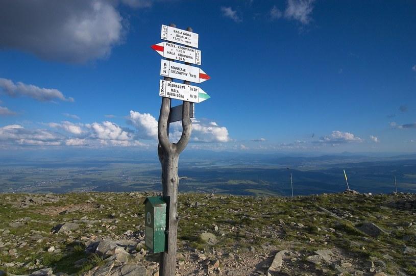 Diablak - najwyższy szczyt masywu Babiej Góry /Krystyna i Aleksander Rabij/REPORTER /East News