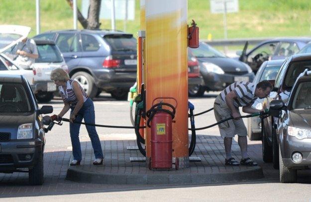 Diesel czy benzyna? A może LPG? /AFP