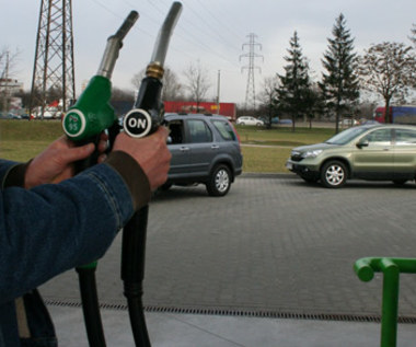 Diesel czy benzyna? Polemika