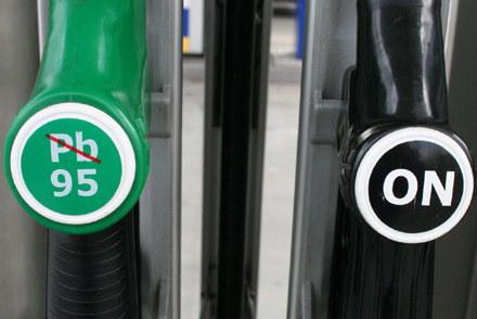 Diesel czy benzyna? /INTERIA.PL