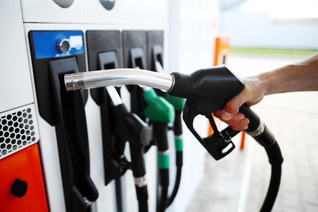 Diesel na stacjach najdroższy od połowy sierpnia 2014 roku /©123RF/PICSEL