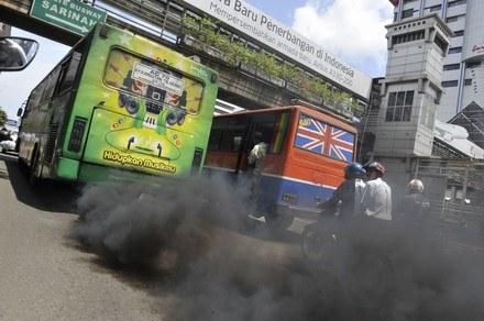 Diesle mogą być ekologiczne /AFP