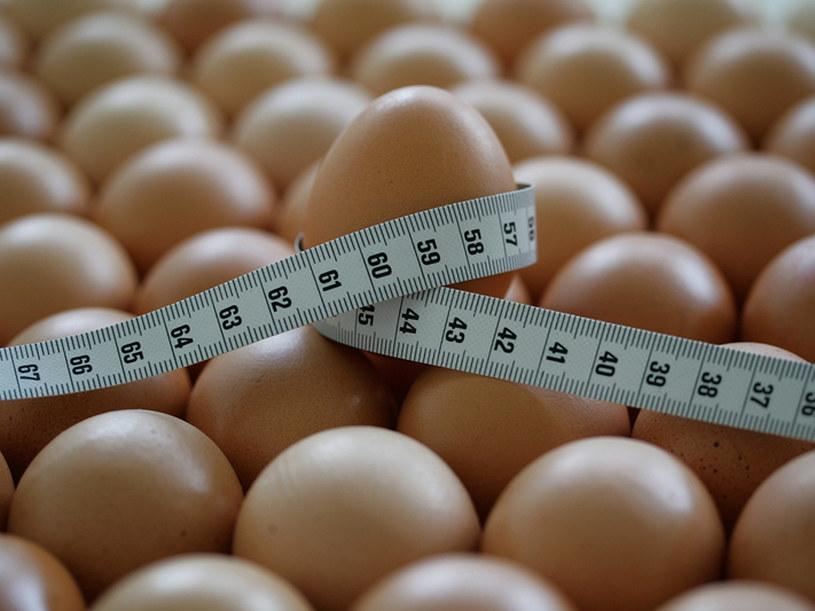Dieta białkowa budzi wiele kontrowersji - ma tylu entuzjastów, co wrogów  /© Panthermedia