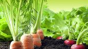 Dieta wegetariańska obniża ciśnienie krwi