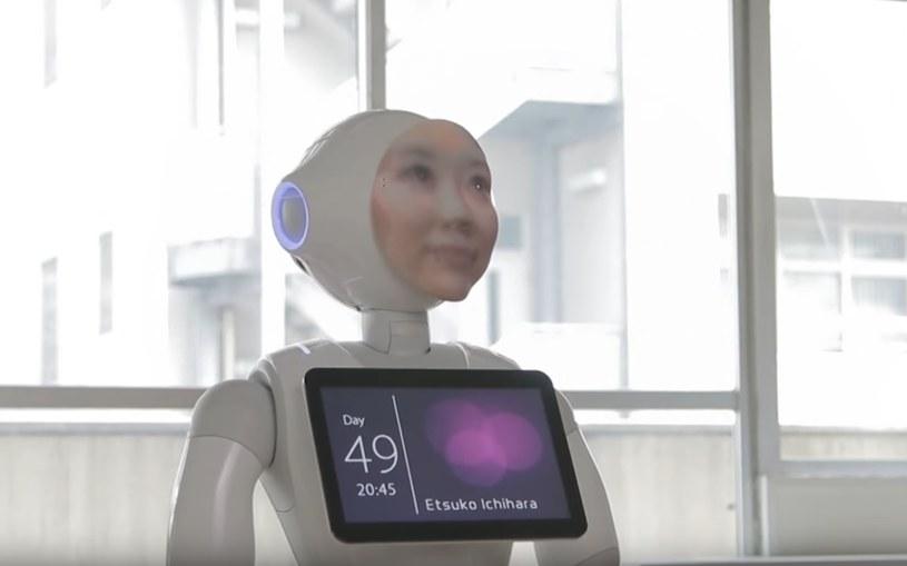 Digital Shaman ma przypominać zmarłą osobę - pod względem wyglądu i zachowania /YouTube